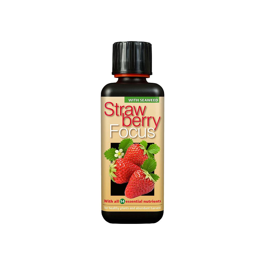 Growth Technology Strawberry Focus