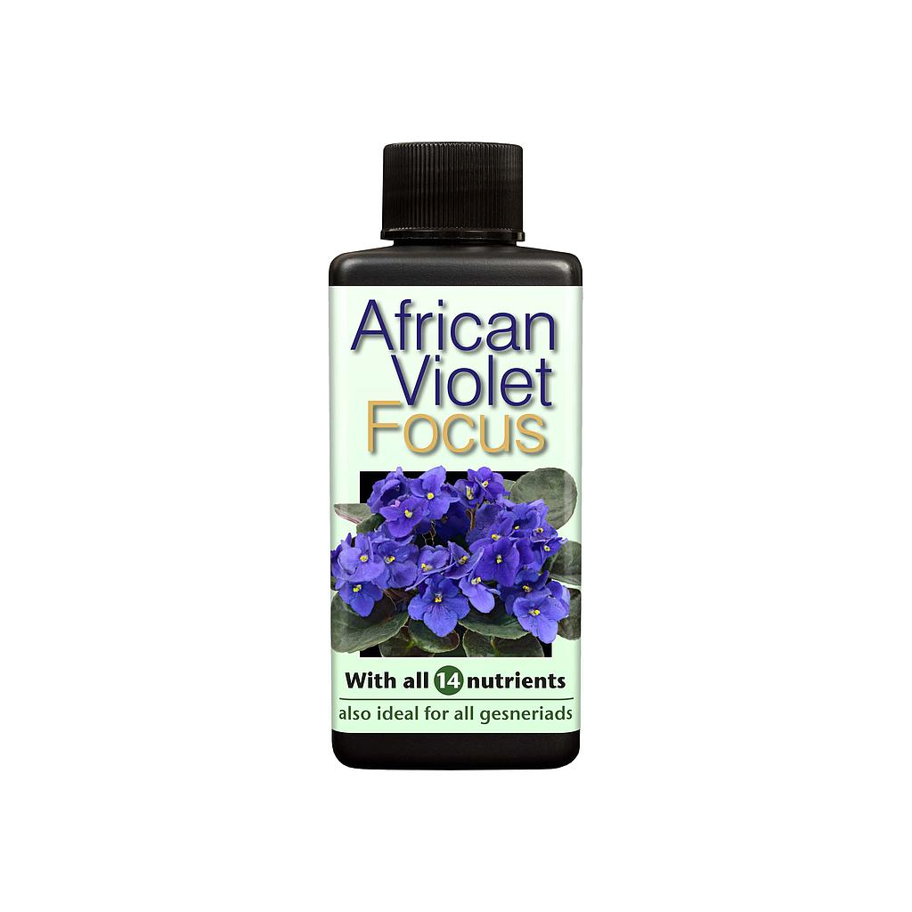 Growth Technology African Violet Focus