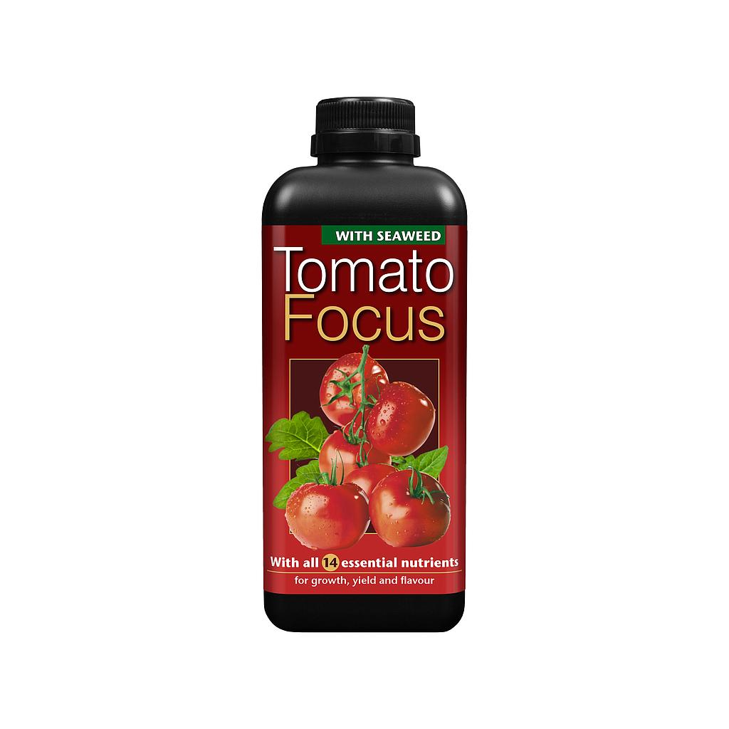Growth Technology Tomato Focus